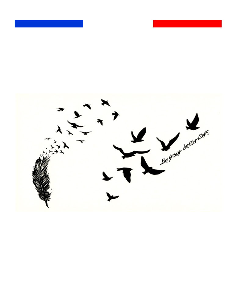 Petits Tatouages Oiseaux Plume Mon Petit Tatouage Temporaire