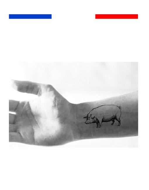 Tatouage cochon temporaire bras
