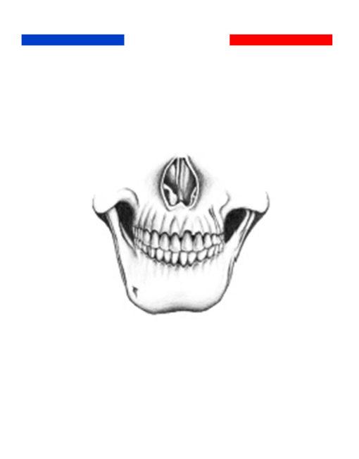 tatouage main tête de mort réaliste