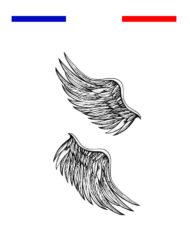 Tatouage 2 ailes d'ange temporire
