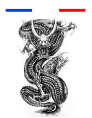 Tatouage Dragon Réaliste Temporaire