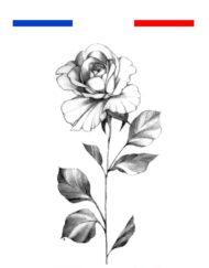 Tatouage Rose Réaliste Noir et Blanc