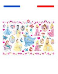 Tatouages Princesses enfants plaque temporaire
